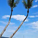 Palms by Denis Molodkin