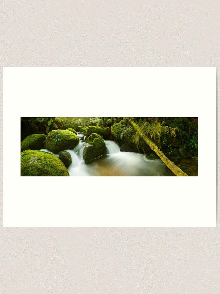 Alternate view of Dawn Moss, Toorongo River, Gippsland, Victoria, Australia Art Print
