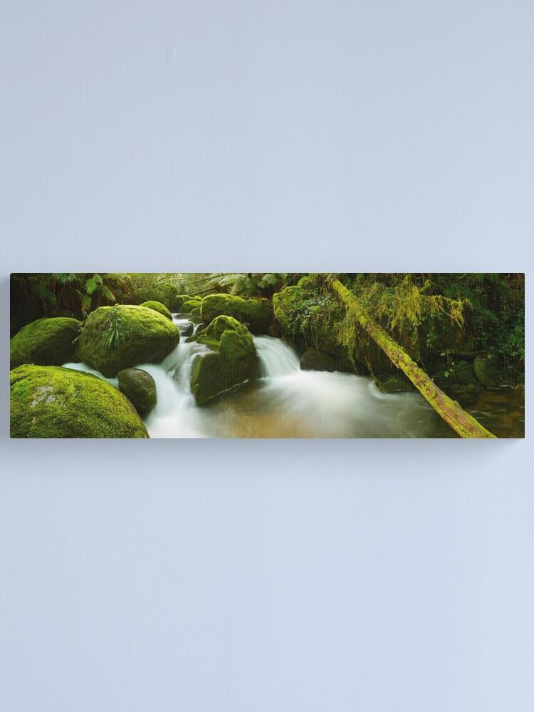 Alternate view of Dawn Moss, Toorongo River, Gippsland, Victoria, Australia Canvas Print