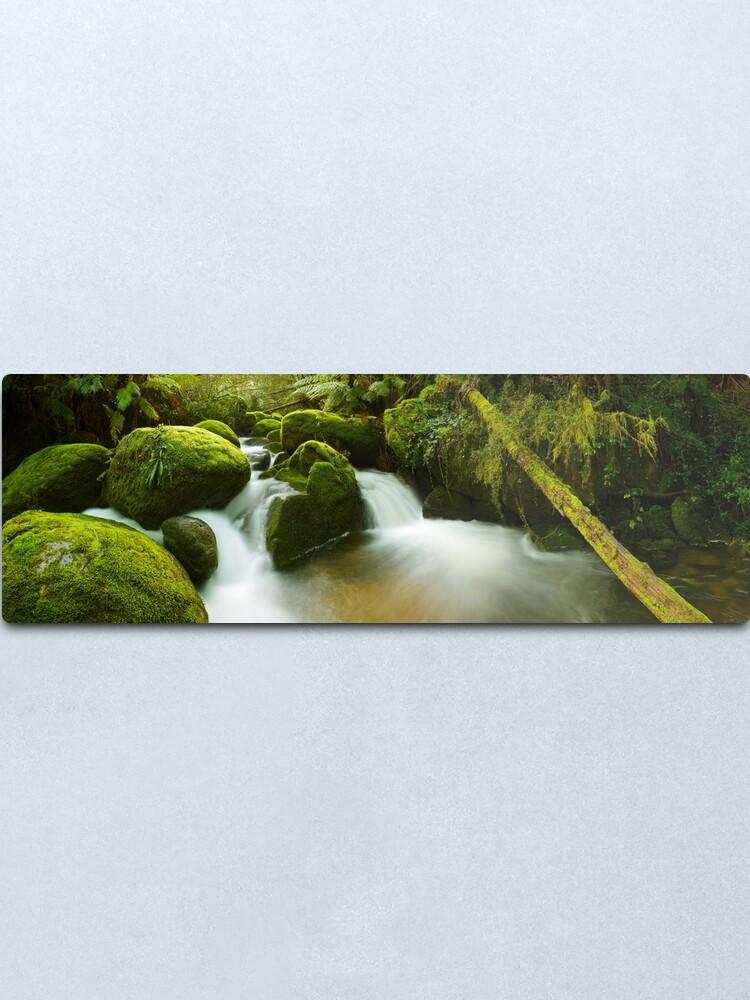 Alternate view of Dawn Moss, Toorongo River, Gippsland, Victoria, Australia Metal Print