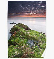 Seaside Oasis Poster
