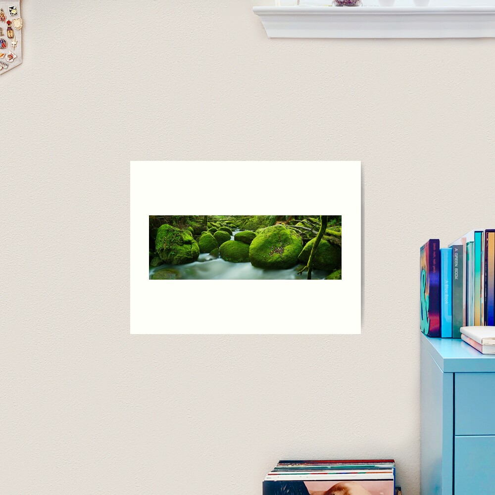 Greenery, Toorongo River, Gippsland, Victoria, Australia Art Print