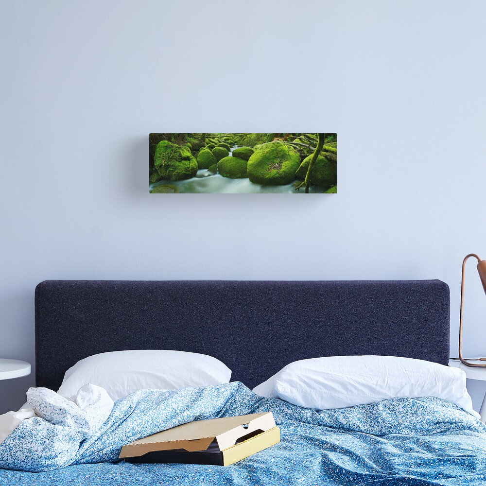 Greenery, Toorongo River, Gippsland, Victoria, Australia Canvas Print