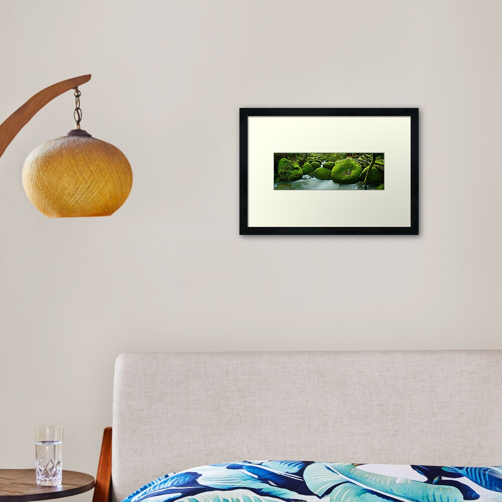 Greenery, Toorongo River, Gippsland, Victoria, Australia Framed Art Print