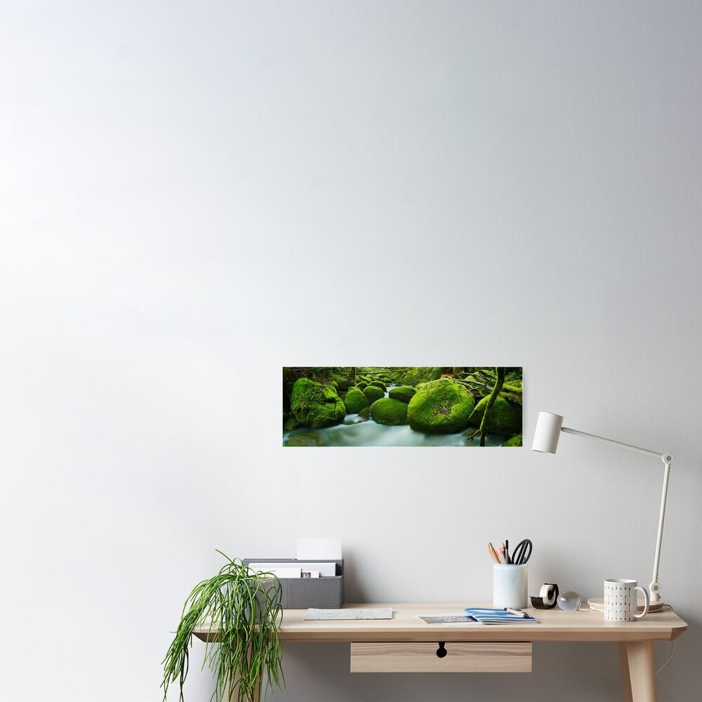 Greenery, Toorongo River, Gippsland, Victoria, Australia Poster