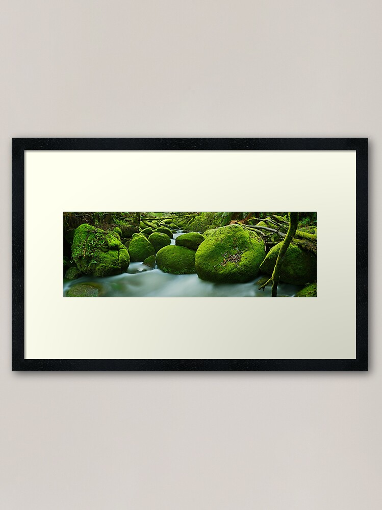 Alternate view of Greenery, Toorongo River, Gippsland, Victoria, Australia Framed Art Print