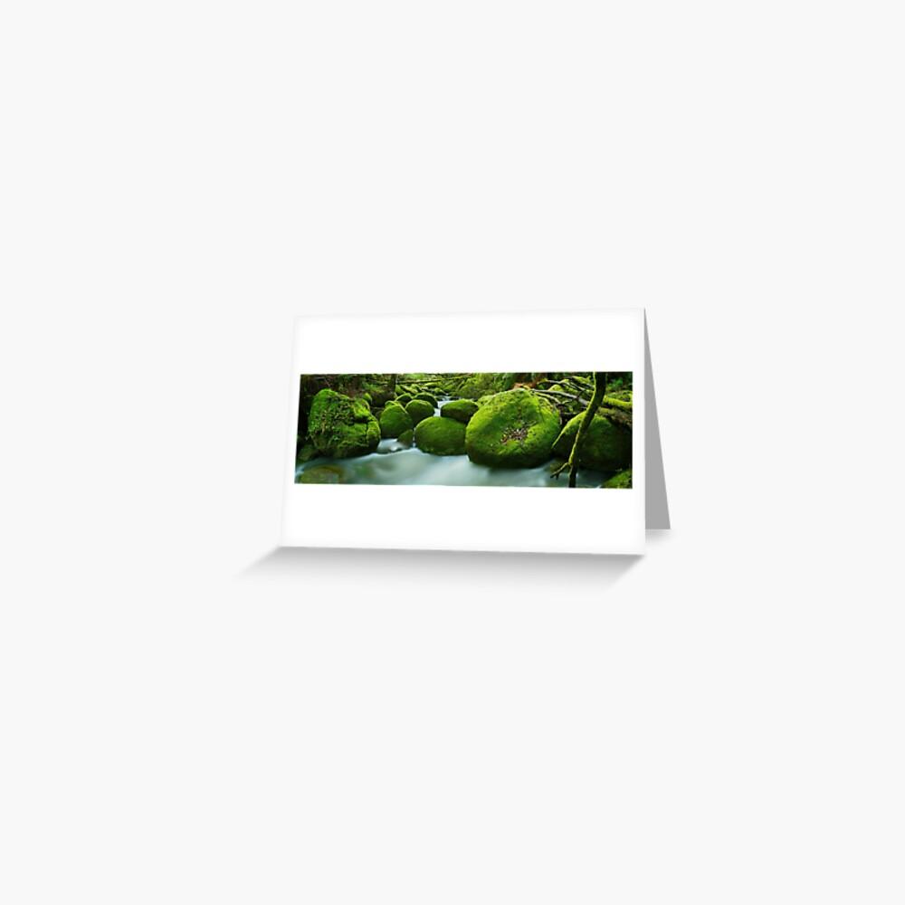 Greenery, Toorongo River, Gippsland, Victoria, Australia Greeting Card