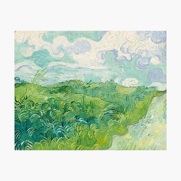 Green Wheat Fields - Van Gough Photographic Print