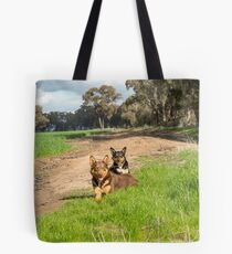 Ross & Missy......Young Kelpies..... Tote Bag