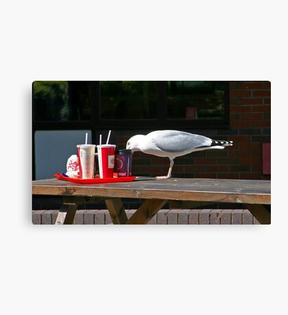 Gull-Ping it down Canvas Print