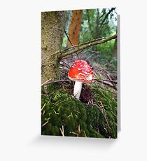 Death in the woods Greeting Card