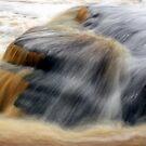 True Water Colors by David Piszczek