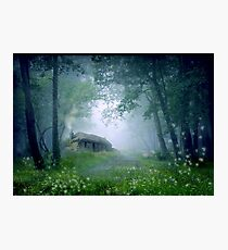 The Cottage in the Woods Photographic Print