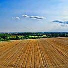 Norfolk Summertime UK by Mark Snelling