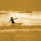 Catching the Waves by Samantha Higgs