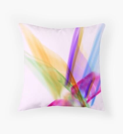 Rainbow Wings Throw Pillow