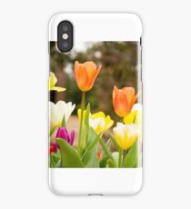 Tulip Time iPhone Case/Skin