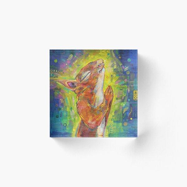Praying Squirrel Painting - 2014 Acrylic Block