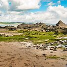 Beach, Rocks & Seaweed - Coastal Scenery by Harmony-Mind