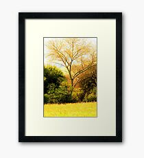 Digital brush strokes Framed Print
