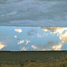 May Reflection by bberwyn