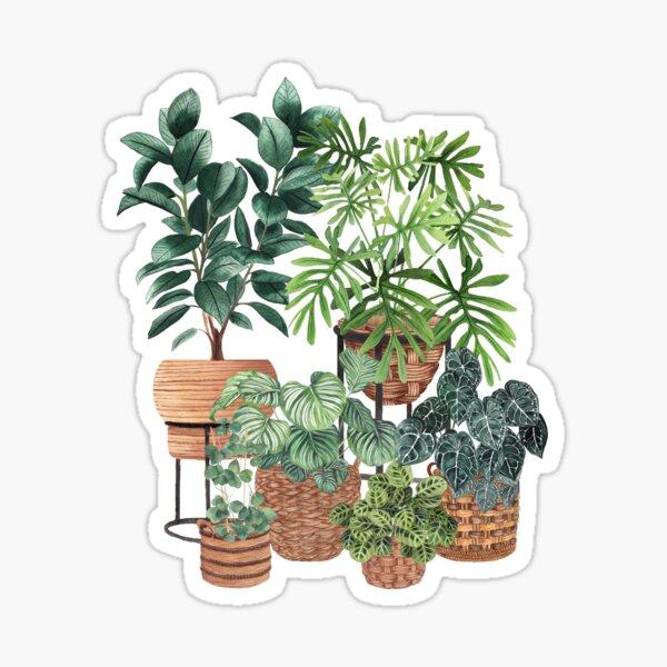 Colección de plantas en maceta 3 Pegatina