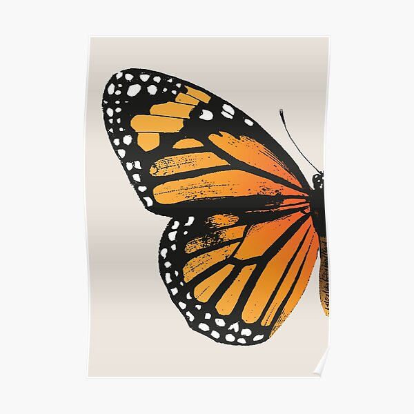 Monarch Butterfly | Left Wing | Vintage Butterflies | Butterfly Wings | Diptych |  Poster