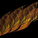 Fine Feather by Jaclyn Hughes