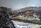 Allotments, Staithes by Sue Nichol