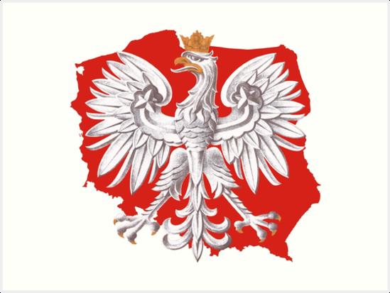 Quot Polish Eagle Poland Outline Quot Art Print By Polishart