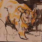 Bear at the zoo by Andrew Hennig