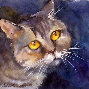 Cat by VVilka
