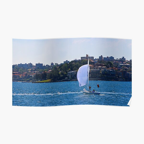 Sailing across Sydney Habour Poster