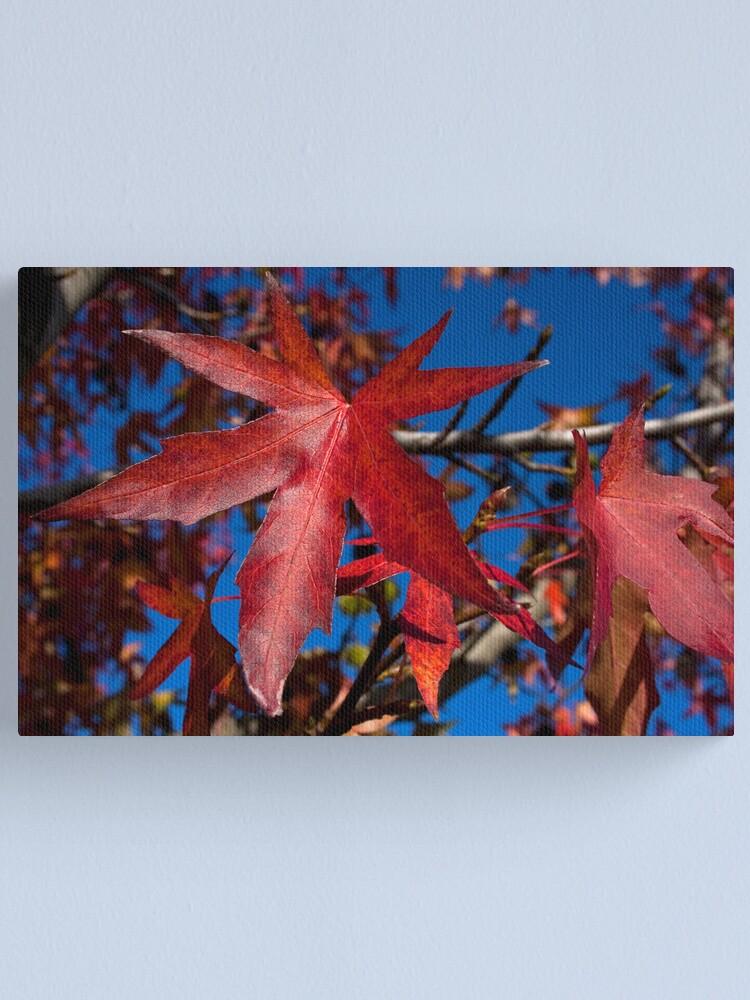 Alternate view of Autumn Blast Canvas Print