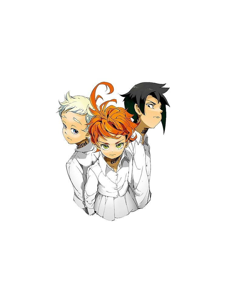The Neverland Promised Emma X Ray X Norman Scarf By Quentinr Redbubble
