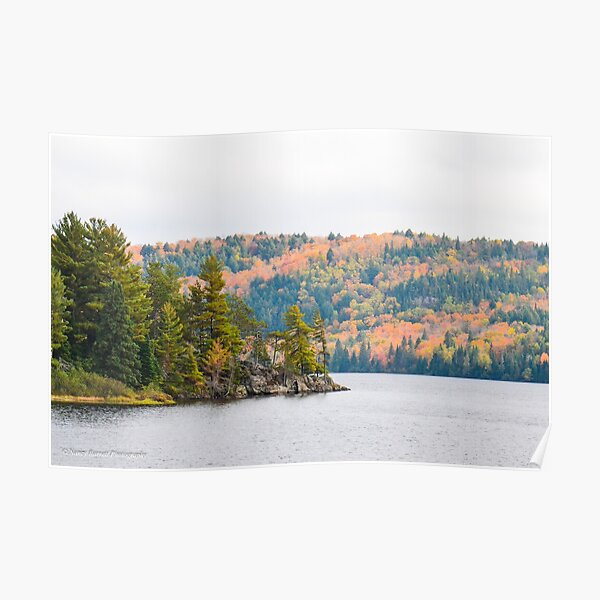Lake of Two Rivers, Algonquin Park  Poster