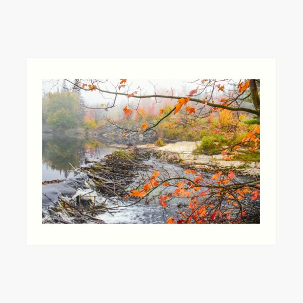 Misty Morning, Algonquin Park  Art Print