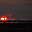 Chicago Skyline Sunset II by Karen Goad