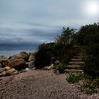 Stairs By the Sea by Carrie Blackwood