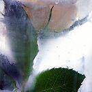 Rose by Suzette McGrath