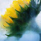 Sunflower by Suzette McGrath