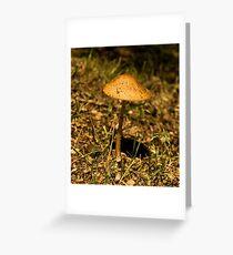 'Shroom Greeting Card