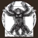 Vitruvian Chimp by ZugArt