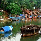View of a Konkani Village by Biren Brahmbhatt