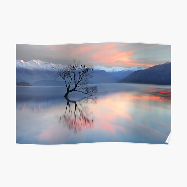 Pink Sky at Lake Wanaka Poster