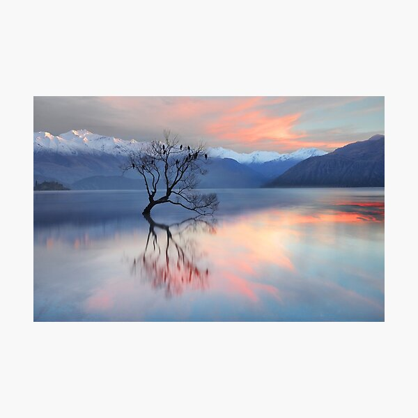 Pink Sky at Lake Wanaka Photographic Print