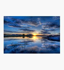 Willow lake Blue Photographic Print