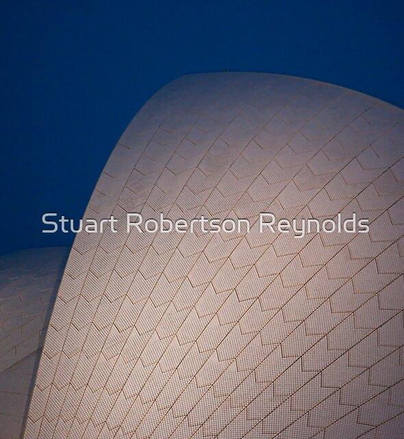 A Night At The Opera by Stuart Robertson Reynolds