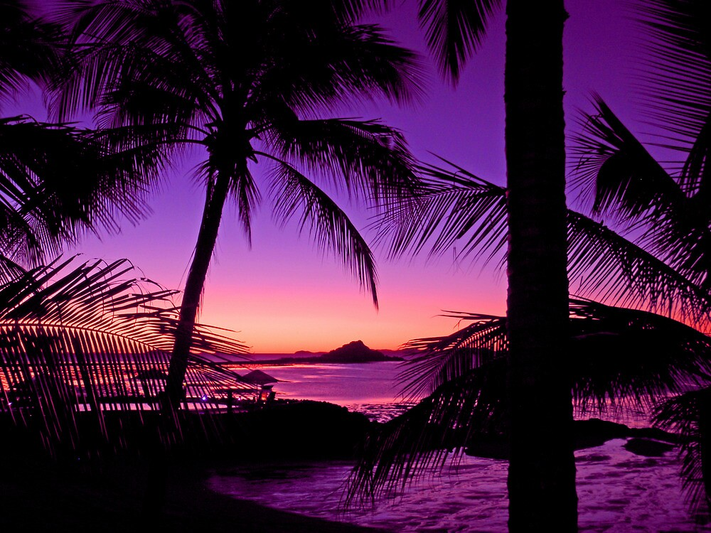 """Tropical Island Sunset"" By Chris Kean"