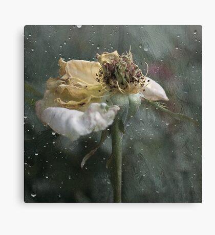 Rust 'n Roses ~ No 16 Canvas Print